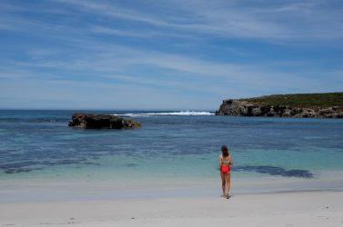 Take a dip at Hanson Bay.
