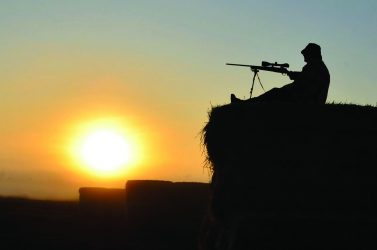 Hunting's economic impact outstrips NSW sheep trade levels.